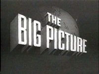 The_Big_Picture_2.JPG