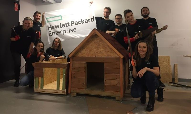 HPE employees helping out at a dog shelter
