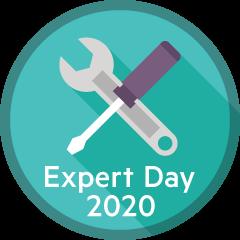 Online Expert Day 2020 SDI