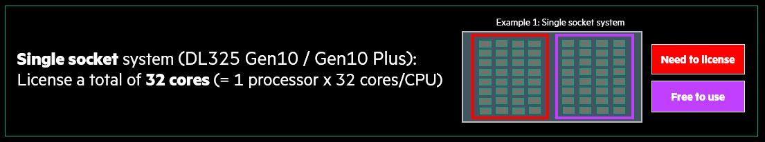 AMD Pilot- single socket example 1.JPG