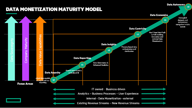 Data Monetization Maturity Model-HPE.png