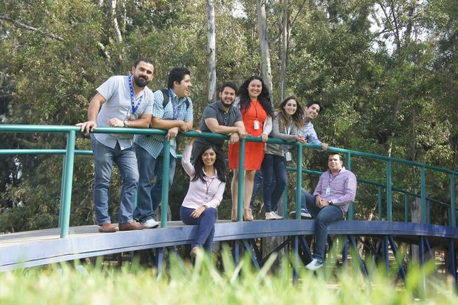 Mexico Global Trade Team enjoying the office outdoors