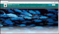 Detect IT:  Fish