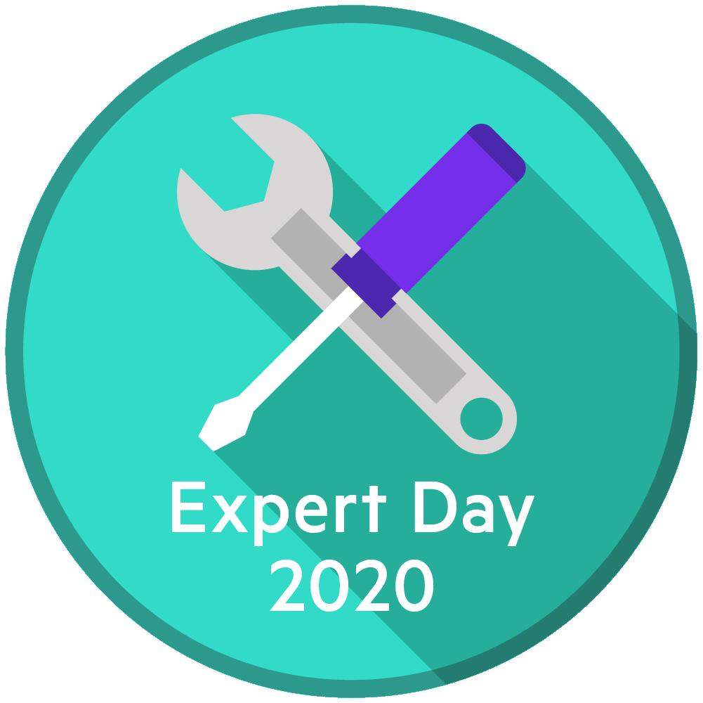 Online Expert Day 2020