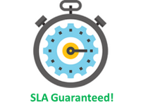 SLA Guaranteed.png