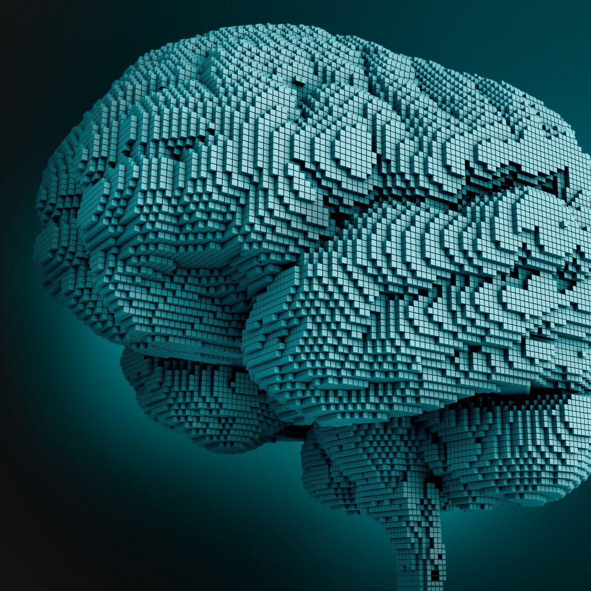 1x1_Brain_3200x3200_preview.jpeg