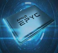 AMD 2.jpg