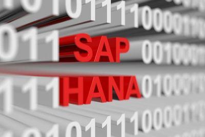SAP HANA_near zero downtime_blog.jpg
