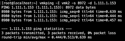 Figure 12: ESXi jumbo vmkping to array's data1 discovery IP