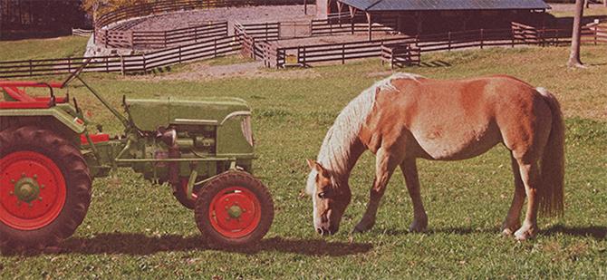 Traktor-og-hest.jpg