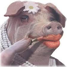 Lipstick on Pig.jpg
