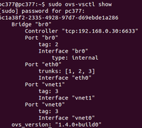 conf ovswitch.png