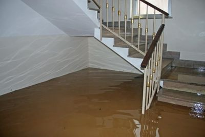 flood waters.jpg