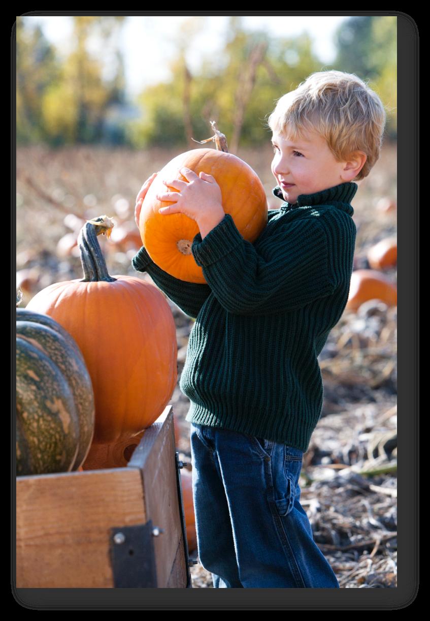pumpkin and kid.png