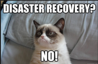 Disaster recovery no.png