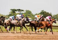 horserace_shutterstock_355901525_blog.jpg