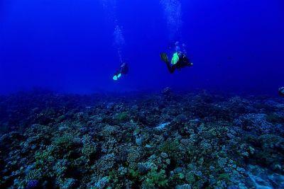 HPE Discover Storage Session Deep Dive Blog.jpg