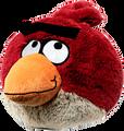 bowzerbird