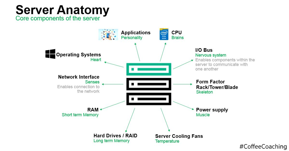 Server anatomy FB.jpg