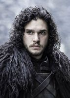 Jon Snow = The SW Developer