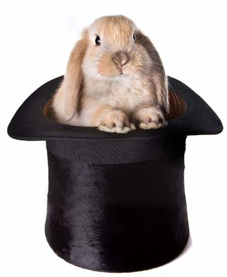 rabbit-hat1.jpg