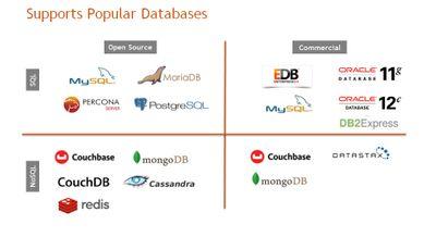 Supports Popular Databases.jpg
