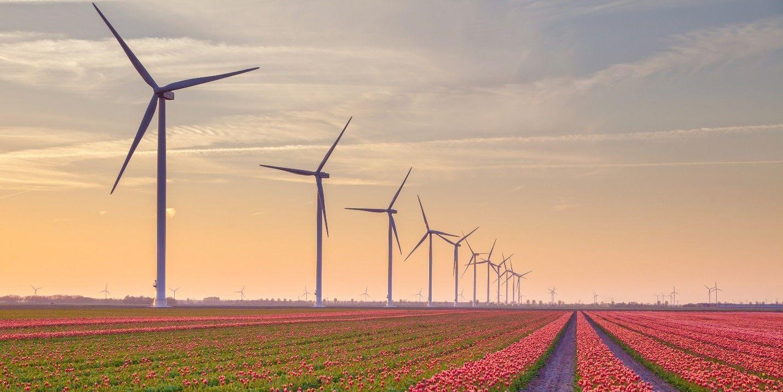windpark.jpg