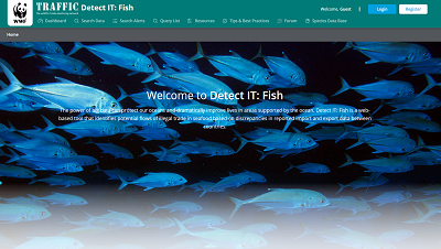 Detect IT: Fish