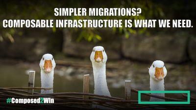 geese migrating.jpg