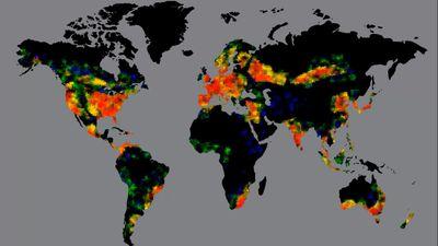 ww pandemic.jpg