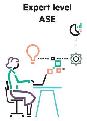 Expert Level ASE_300.jpg