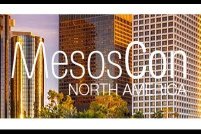 meso-blog.jpg